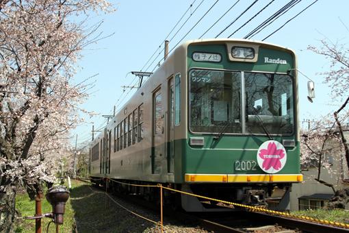 2012_04_08_sano_toru001.jpg