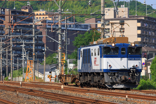 2012_06_14_tanichi_tatsuya001.jpg