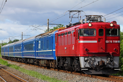 2012_06_23_hasegawa_kodai001.jpg