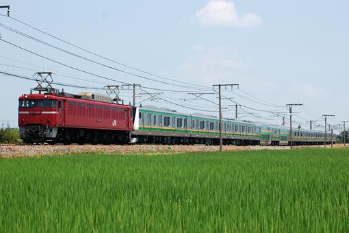 2012_07_31_hashimoto_akira001.jpg