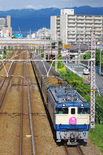 2012_09_01_harada_takashi002.jpg
