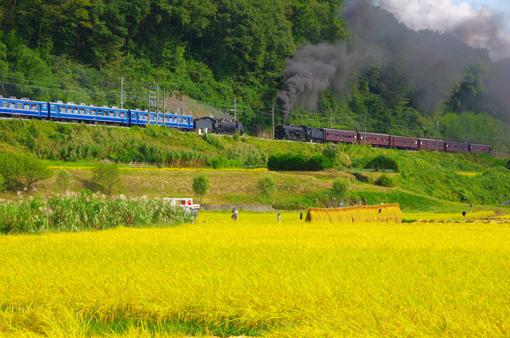 2012_09_22_harada_takashi001.jpg