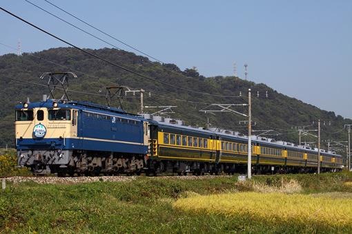 2012_10_21_hasegawa_kodai001.jpg