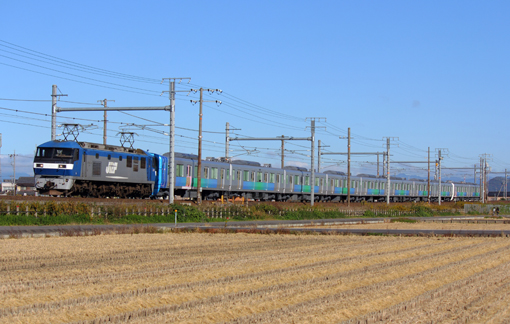 2012_11_10_nagao_junpei001.jpg