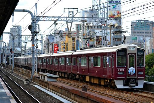 2012_11_10_nakatsukasa_sakura001.jpg