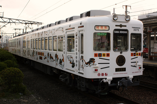 2012_11_30_hashi_naoki001.jpg