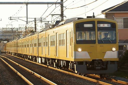 2012_12_06_yabuta_yuya002.jpg