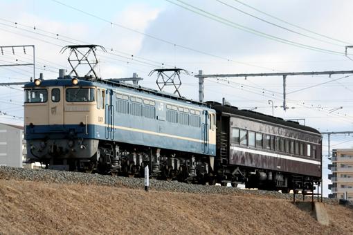 2013_01_04_hashi_naoki001.jpg