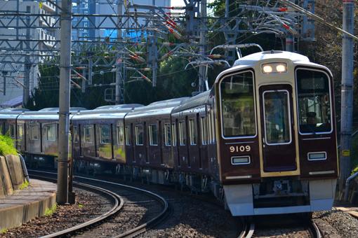 2013_03_22_nakatsukasa_sakura002.jpg