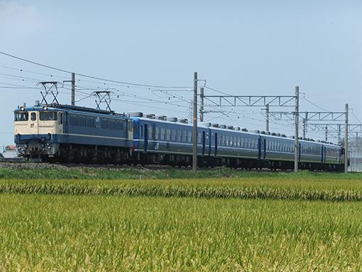 2013_08_11_hashimoto_jun001.jpg