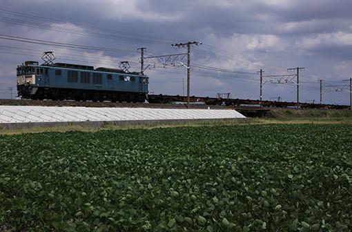 2013_08_20_ootsuki_shinichi001.jpg
