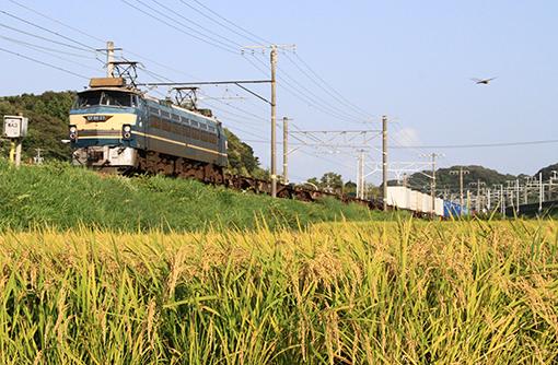 2013_08_30_ootani_masahiro001.jpg
