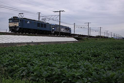 2013_09_10_ootsuki_shinichi001.jpg