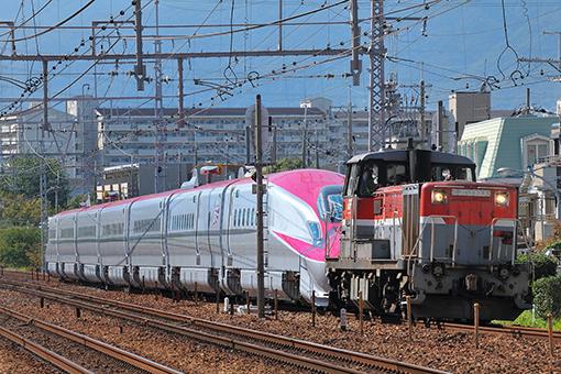 2013_09_18_hayakawa_kazushige001.jpg