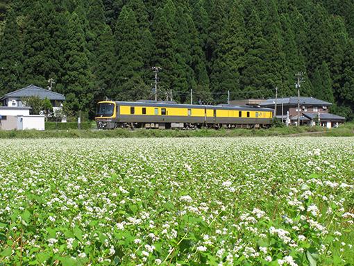 2013_09_18_watanabe_motoyuki001.jpg