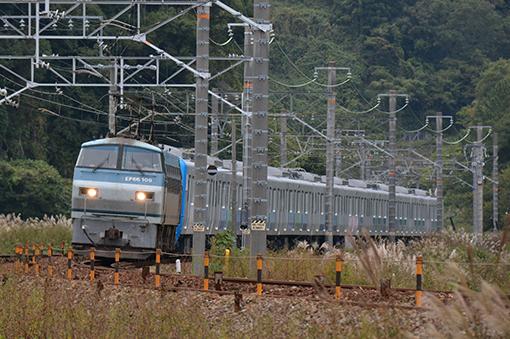 2013_11_09_ootani_mahiro001.jpg