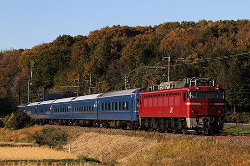 2013_11_19_saitou_daiki001.jpg