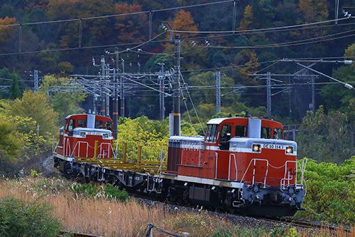 2013_11_27_takashima_dai001.jpg