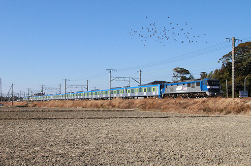 2014_01_13_ootani_mahiro001.jpg