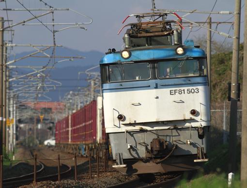 2014_03_21_sirodo_youji001.jpg