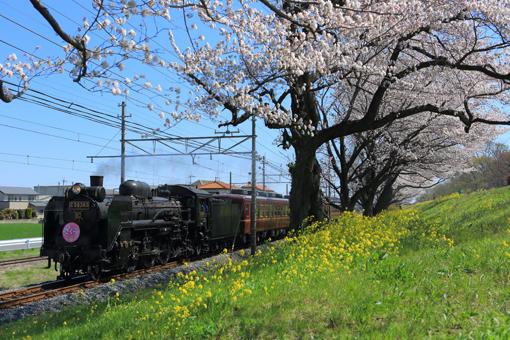 2014_04_05_kamiyashiki_kenji001.jpg