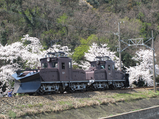 2014_04_11_watanabe_motoyuki001.jpg