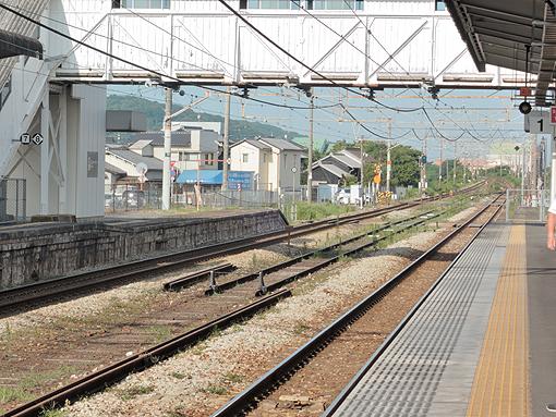 2014_07_24_tanaka_eizou001.jpg