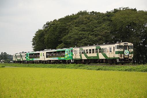2014_08_24_kubota_kennichi001.jpg